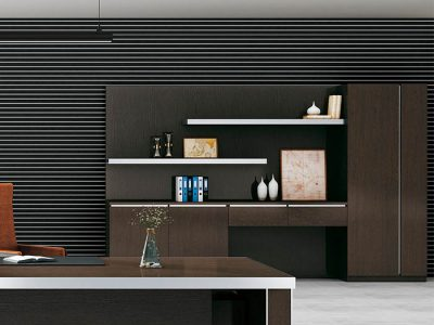 office cabinet FC001